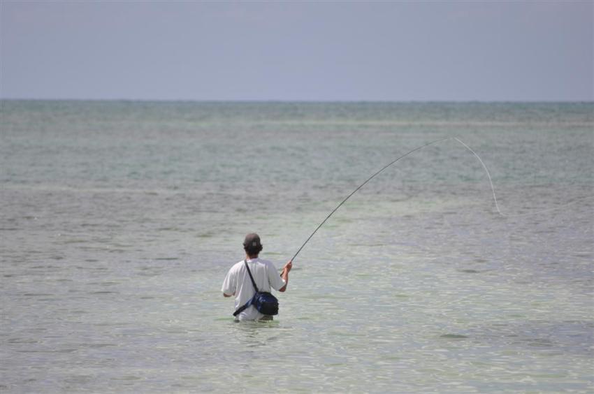 Pescador practicando la pesca en las cristalinas aguas de Islamorada
