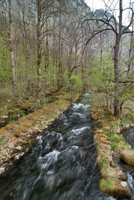 有個小溪連接國王湖和 Mittersee
