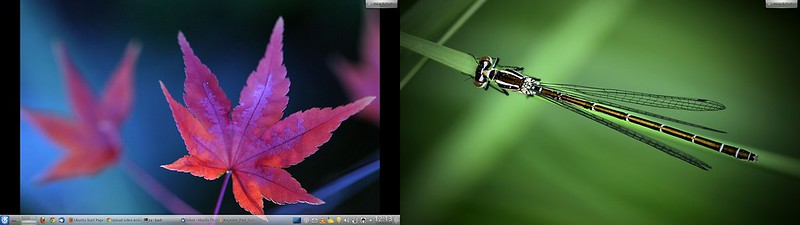 kde dual screen