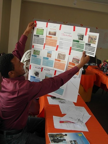 Discovering the 'happy strategies' game at the N3 partners meeting, April 2012 (Credits: ILRI/Catherine Pfeiffer)