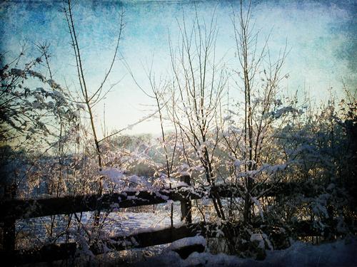 pdpa-fencing-winter-1-w