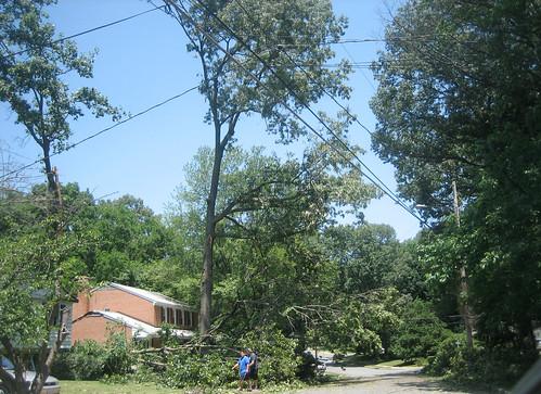 20120630 1157 - storm damage while yardsaleing - more fallen trees - IMG_4564