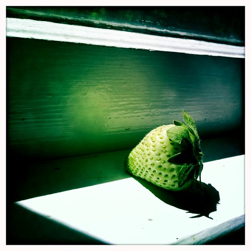 green berry on the sill