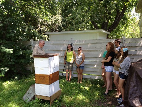 Mark shows some visitors the backyard hive