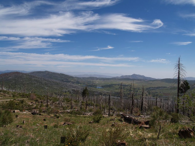 Looking northeast toward Lake Cuyamaca