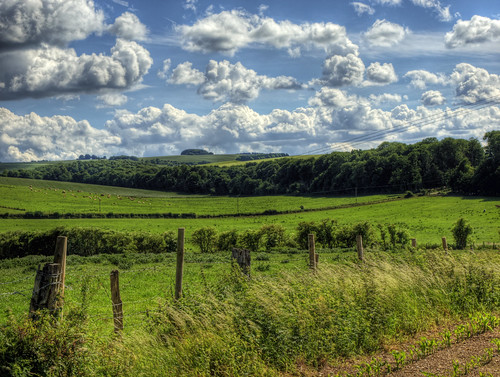 A Rural Landscape near Winchester , UK