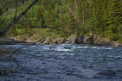 Castle River