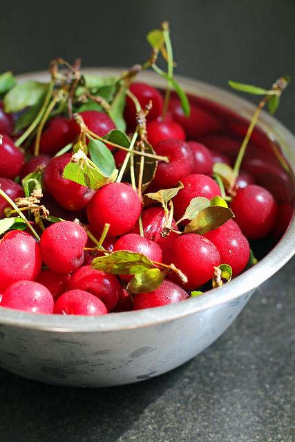 sour cherry and pistachio crisp