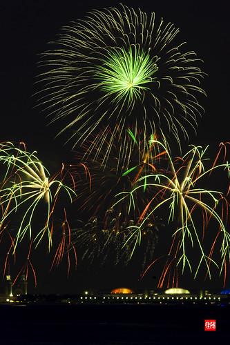 D80 CHI Fireworks 2012_07-04 05B