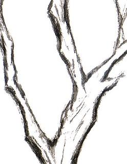 Stillman & Birn Alpha Sketchbook Trunk Detail