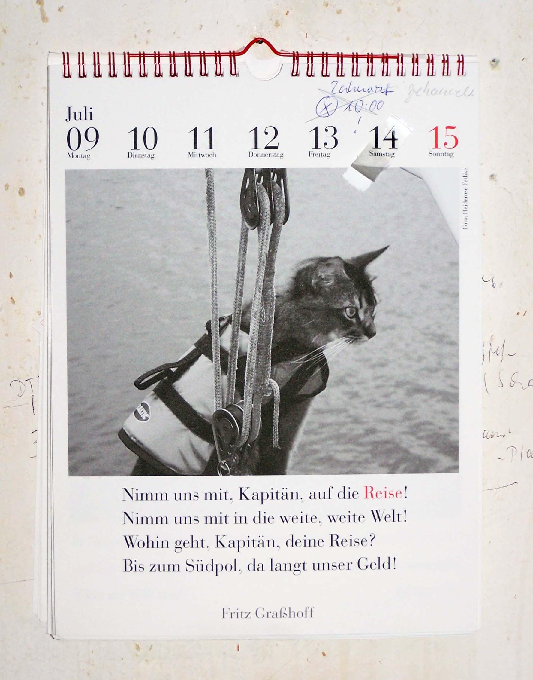 Fritz Graßhoff, Nimm mich mit, Kapitän, auf die Reise, Der literarische Katzenkalender 2012, 9. bis 15. Juli 2012