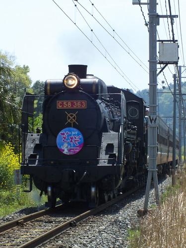 C58 363(あの花芝桜HM) @寄居〜波久礼