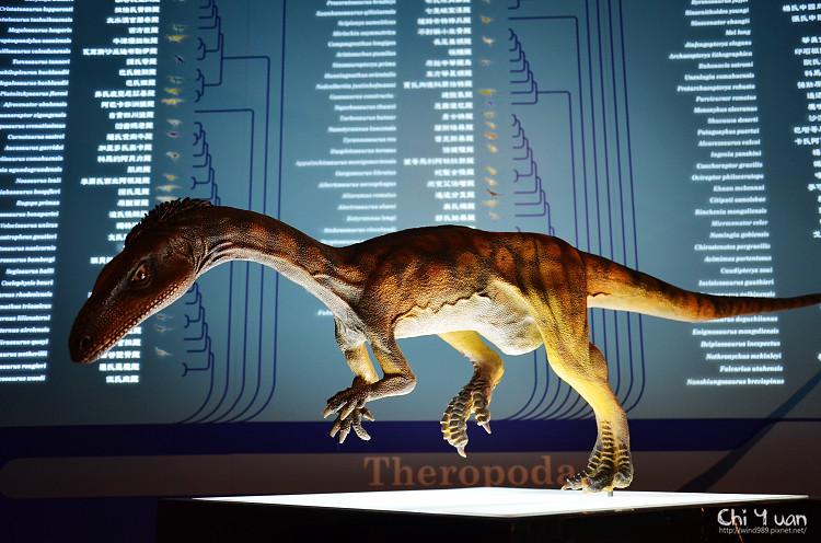 地球最古老的恐龍展20.jpg