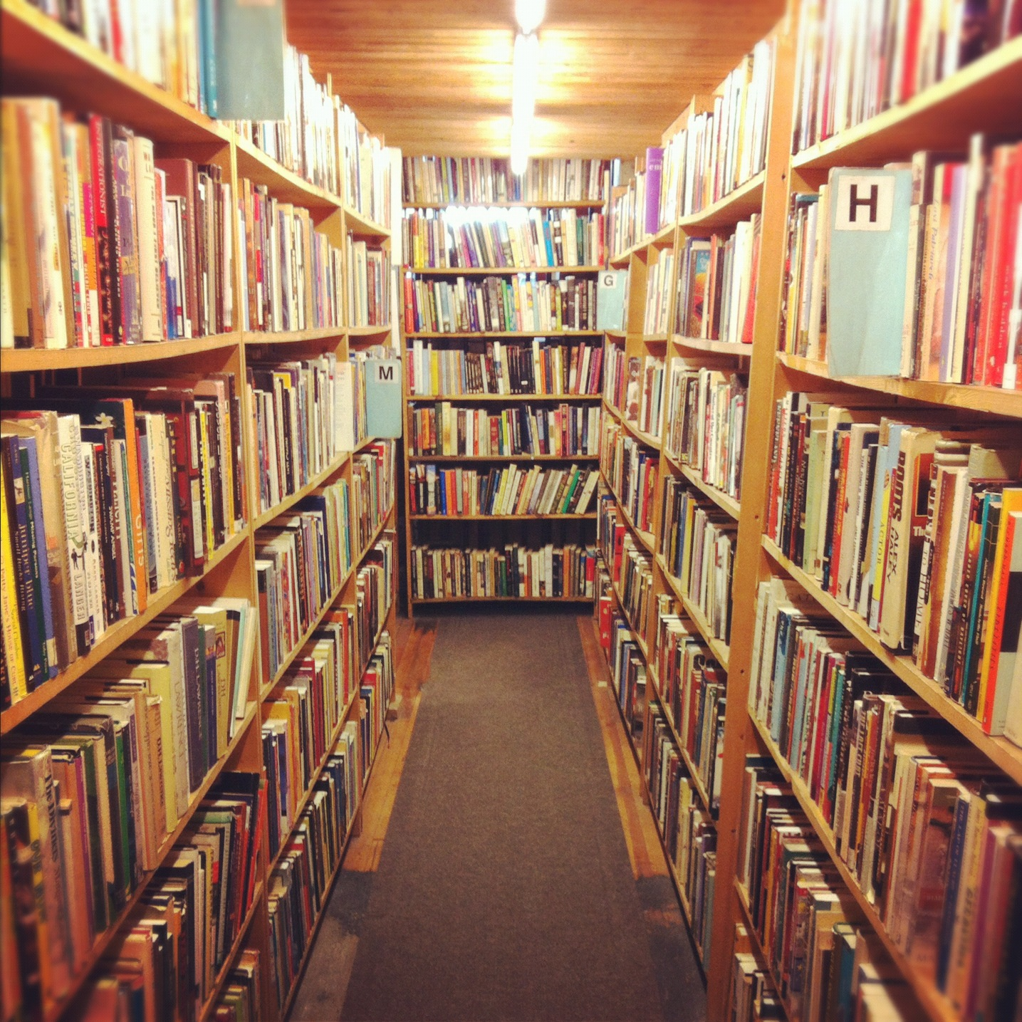 importance of library in school essay