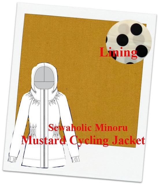Mustard Jacket