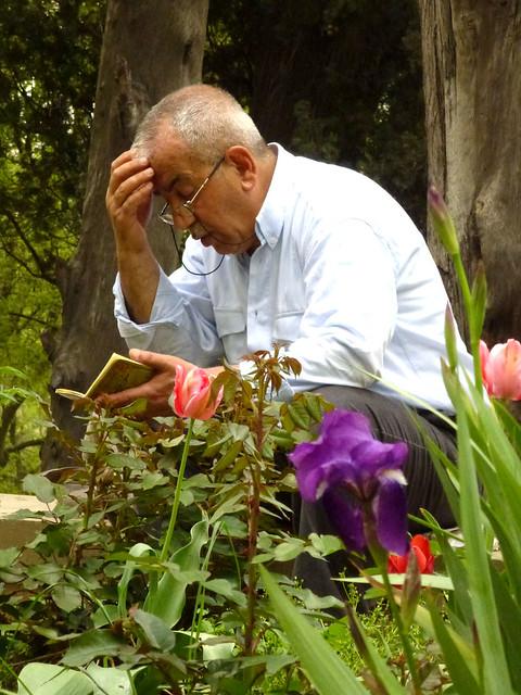 Istanbul - avril 2012 - jour 4 - 106 - Eyüp Mezarlığı