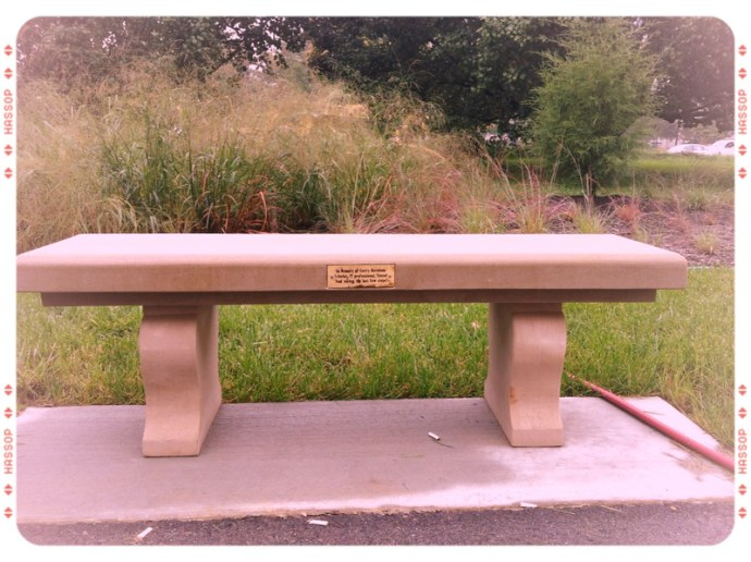 Gerry's Bench