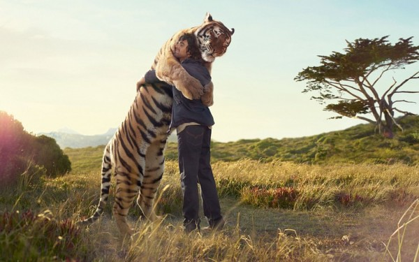 The Hug. Tiger and man. O Abraço. Tigre e homem