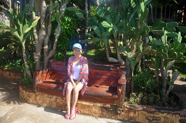 Bench and Cacti