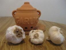 Organic Garlic: Three different kinds