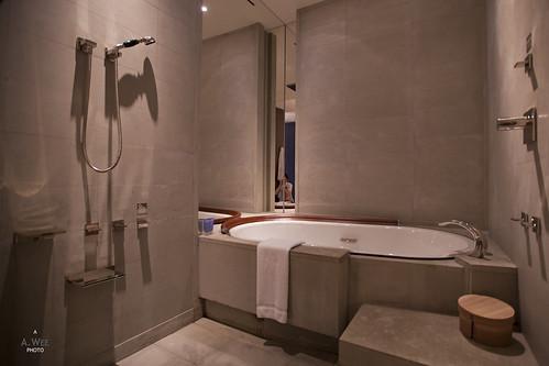 Bathtub and Enclosed Shower