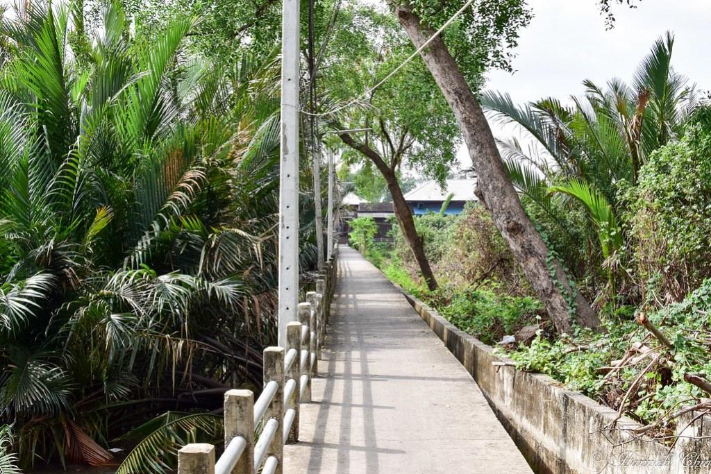 Bangkok Tree House-88