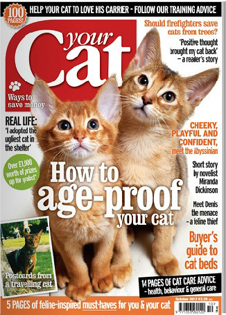 yourcatOct12cover