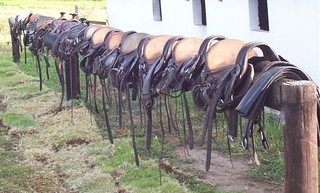 Tack lined up after being cleaned