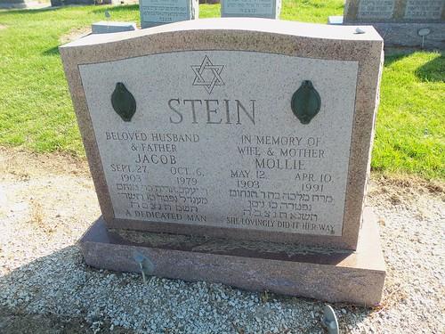 Stein (2)