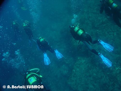 Grupo de submarinistas en Islas Medas