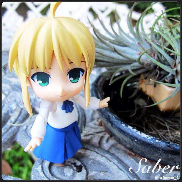 Tour the Garden with Saber by fatechan_t