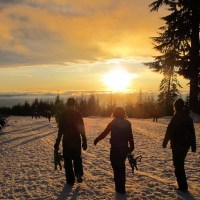 Backcountry Parking at Mount Seymour
