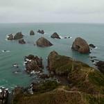 Nueva Zelanda, Isla Sur 34