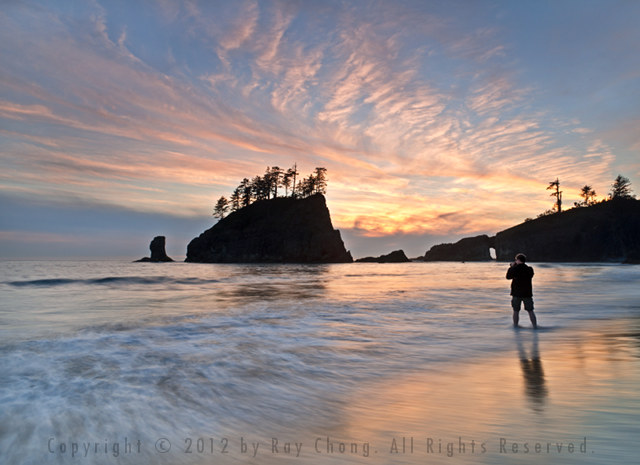 Second Beach, Olympic National Park, 2012