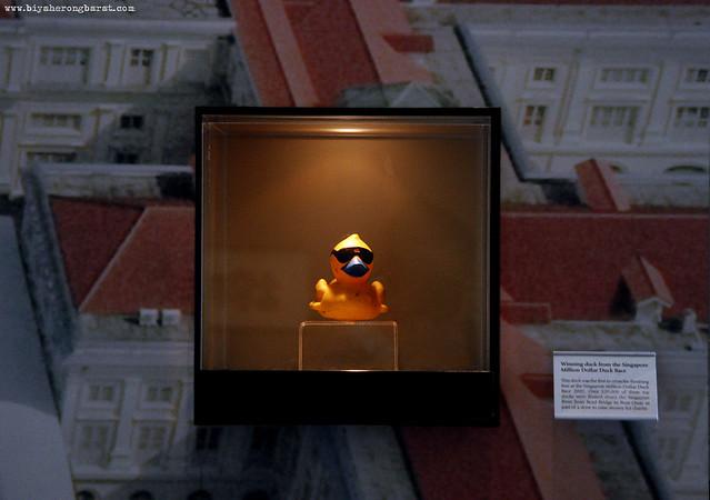 Winning Duck SIngapore River Race Asian Civilisations Museum
