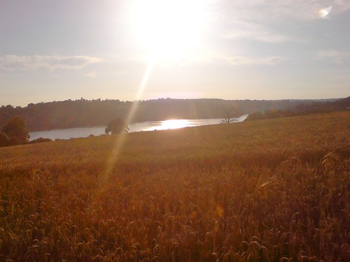 Ardingly Reservoir, West Sussex, UK. August 2007 by knitahedron