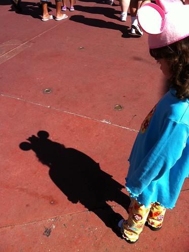 disney ears shadow