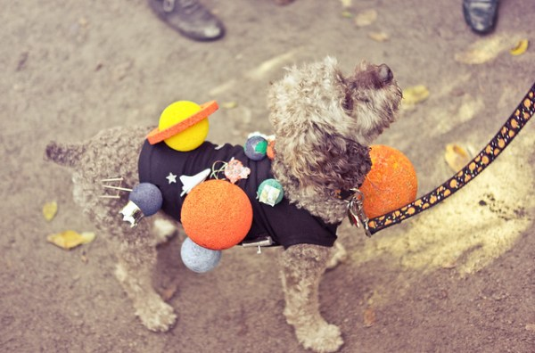 Halloween Dog Parade 2012, Solar System Dog Costume, Tompkins Square Park, East Village, New York City