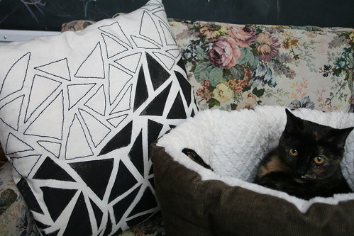 Mixed Media Pillows