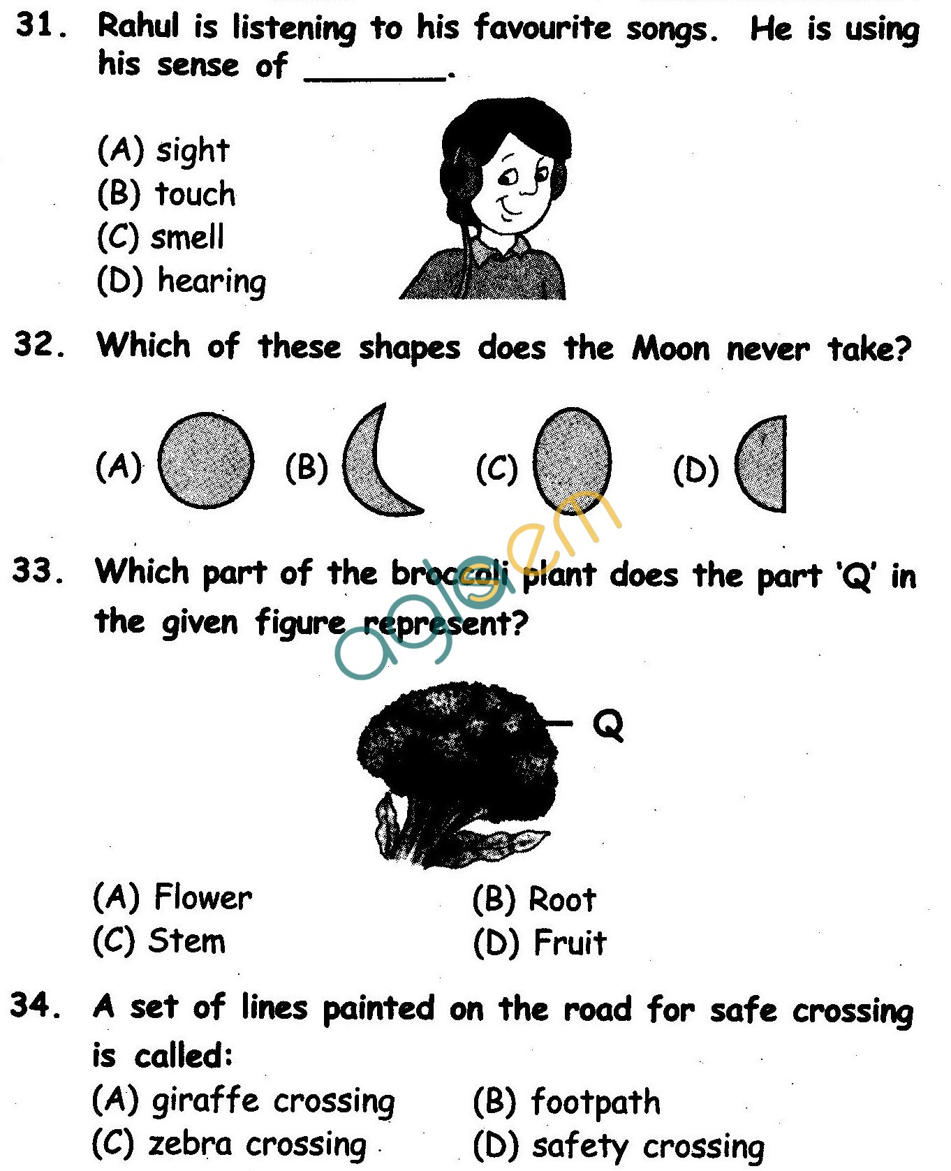 NSTSE 2010 Solved Question Paper for Class II