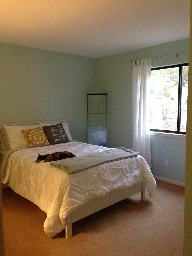 Sneak peek of the guest room!