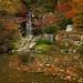 Anderson Japanese Gardens 007