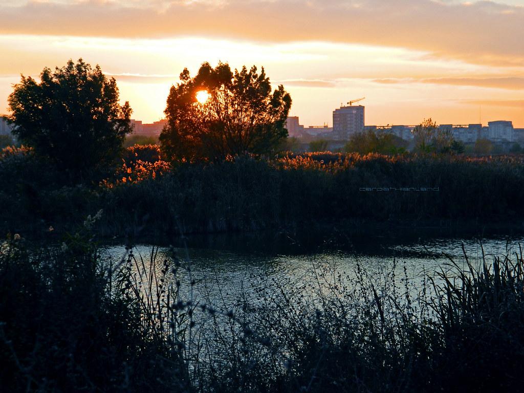 Văcărești urban wetland Nature Reserve, Bucharest