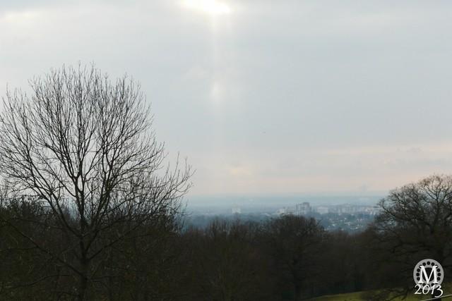 Bedford's Park