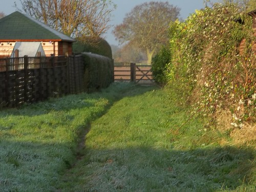 20121201-11_Frosty Bridle Path_Cawston Rugby_By Craig by gary.hadden