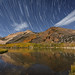 Star Trails Over Fall Colors