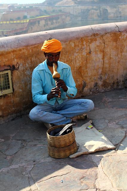Snake charmer - Amer Fort