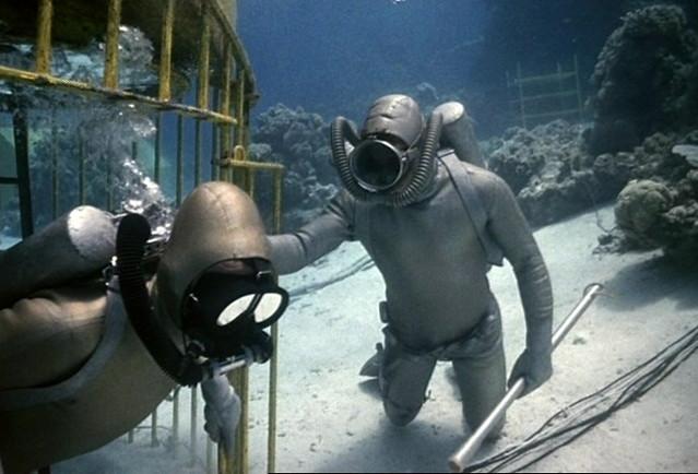 Oceanautas en la jaula antitiburones