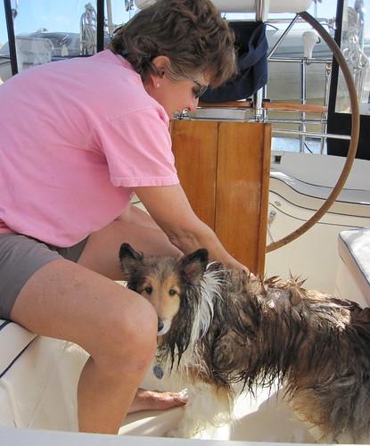Bailey gets a cockpit bath