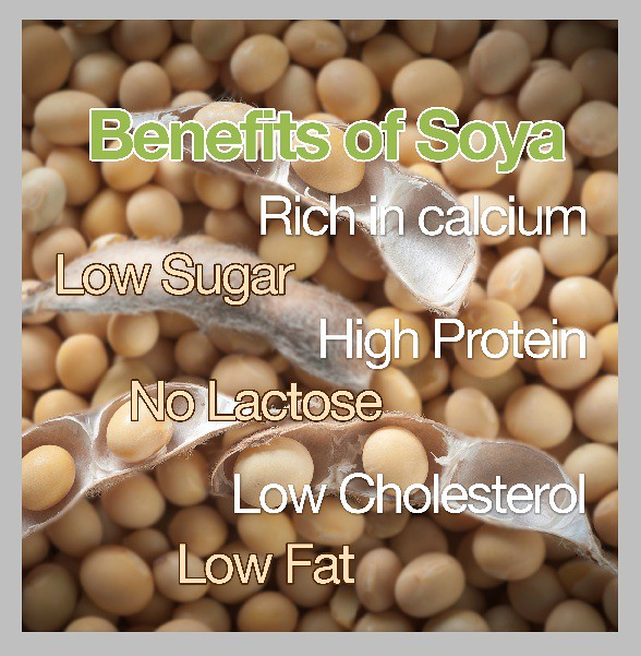 soy benefits